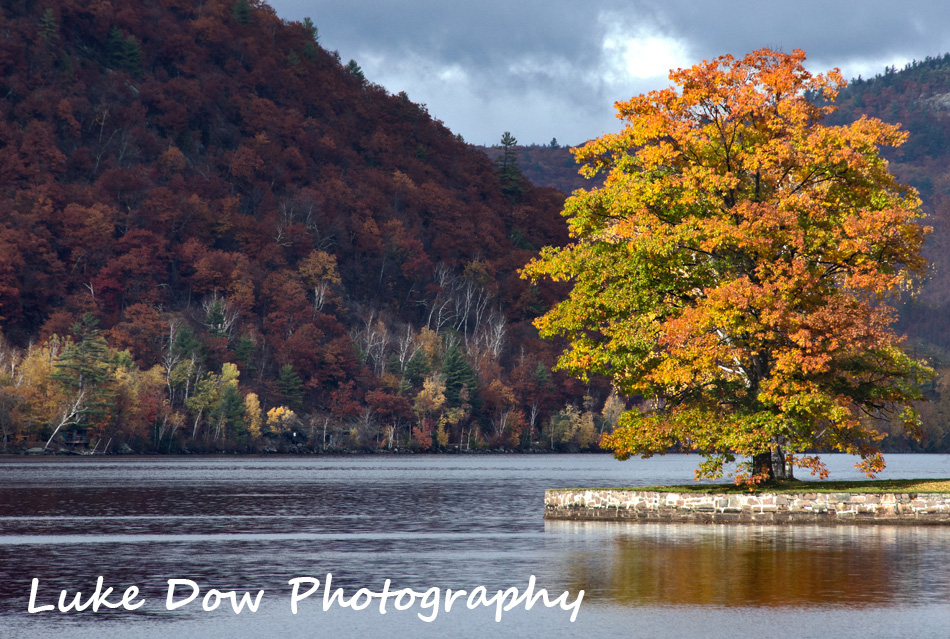 Adirondack Gallery is updated!!